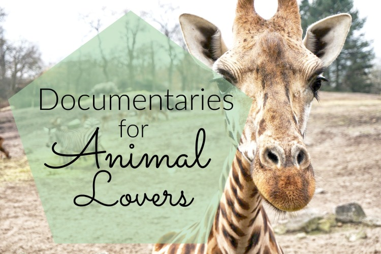 Documentaries for Animal Lovers