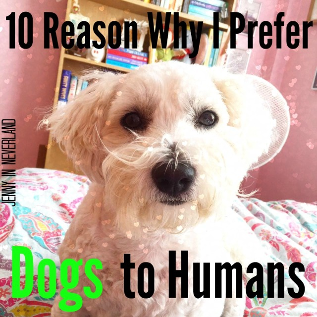 10 Reasons Why I Prefer Dogs to Humans